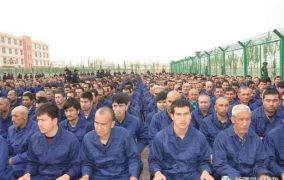 Concentration Camps are back -