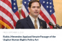 Uighurs thrilled at the US Senate's passage of Uyghur Human Rights Policy Act